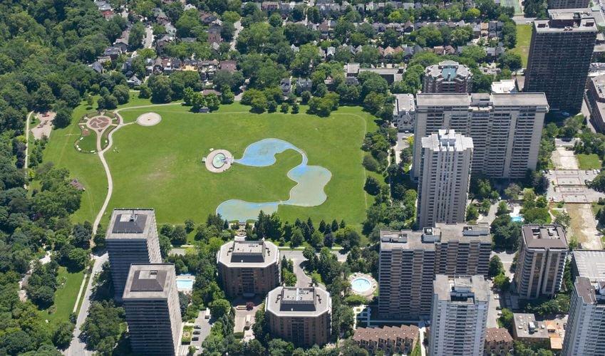 development of urban forest