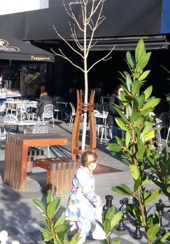tree in eaton mall