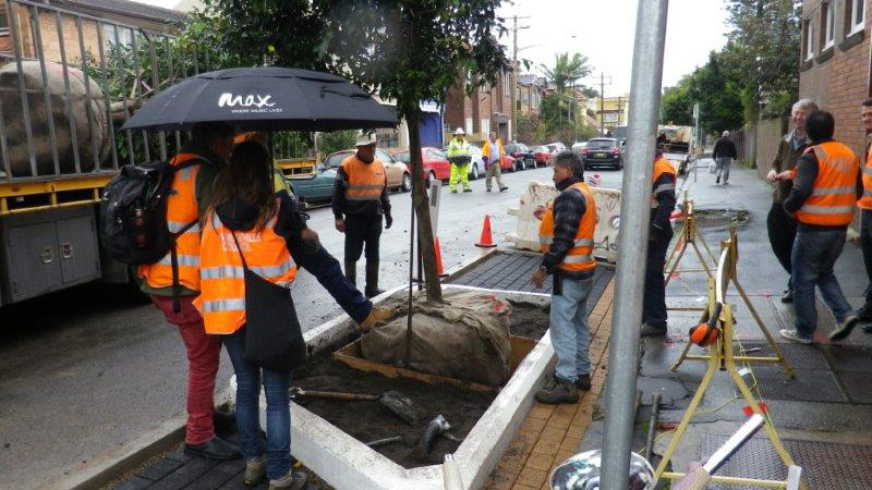 Tree Planting in Cavendish Street Marrickville