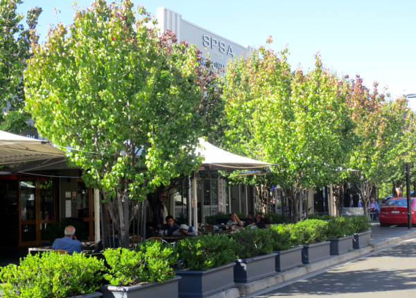 Citygreen - Retail Landscaping, The New Experience