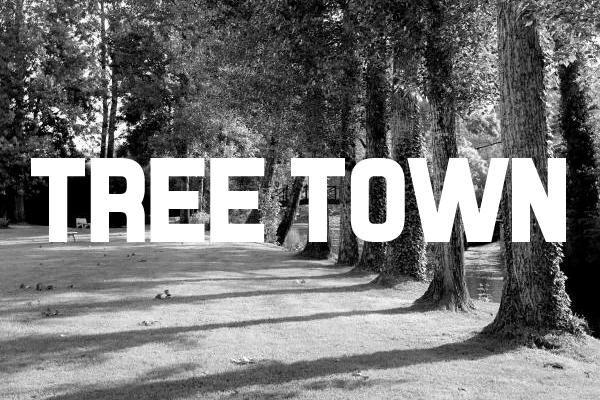 Citygreen - Ann Arbor Tree Town