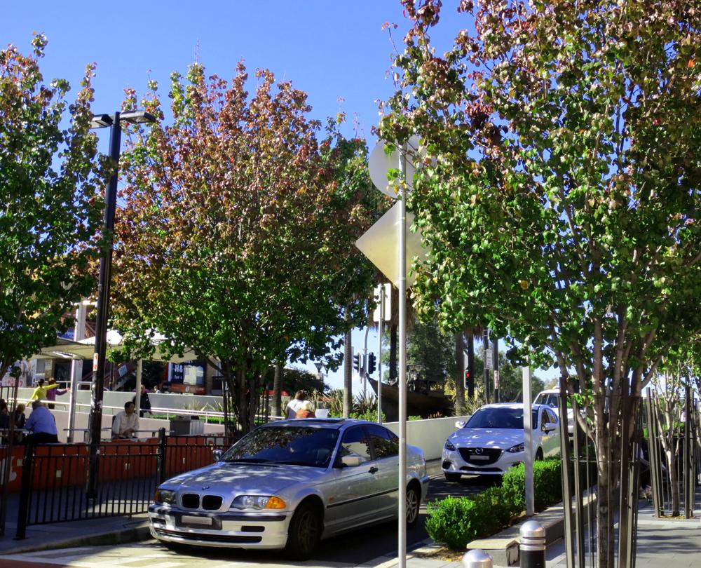 Stratacell praised in Bankstown CBD upgrade