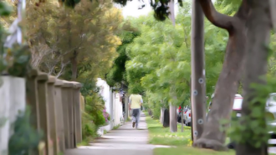 trees to be planted greater geelong
