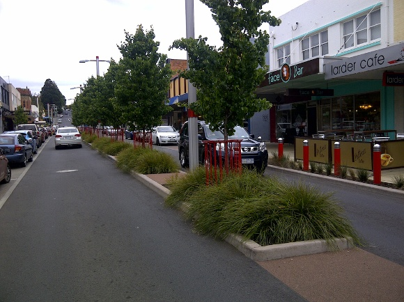 What You Need For a Successful Urban Treepit Design