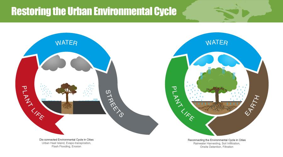 urban environmental cycle