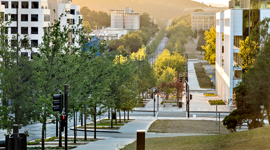 Constitution Avenue, Canberra Project - Citygreen