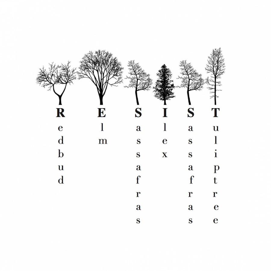 NYC Tree Alphabet